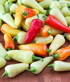 Santa Fe Grande Chili Pepper Seeds 20 Seed Pack by OrganicSeedSupply