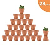 Riseuvo 28pcs Small Mini Clay Pots - 2'' Terracotta Pot Clay Ceramic Pottery Planter, Cactus Flower Terra Cotta Pots, Succulent Nursery Pots, with Drainage Hole, for Indoor/Outdoor Plants, Crafts