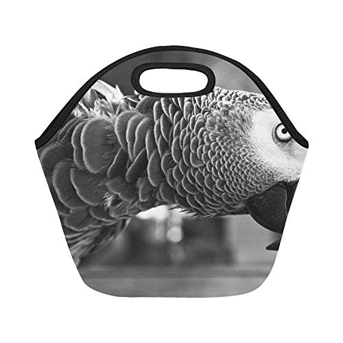Insulated Neoprene Lunch Bag Parrot Bird Animal Pet Beak Feather Exotic Large Size Reusable Thermal Thick Lunch Tote Bags For Lunch Boxes For Outdoors,work, Office, School