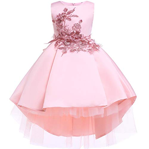 Baby Girls Infant Embroidery Dress Wedding Toddler High-end Dress Flower Dress,D0582-Pink,6]()