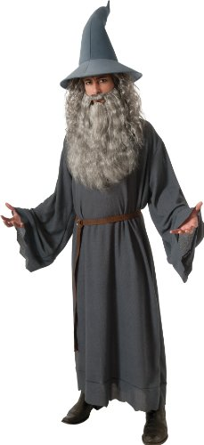Gandalf The Grey Halloween Costume (Rubie's Costume The Hobbit Gandalf, Gray, One Size)