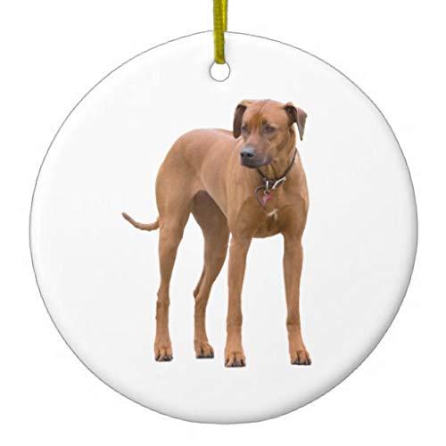 LilithCroft99 Rhodesian Ridgeback Dog Beautiful Photo Gift Ceramic Christmas Ornaments Novelty Christmas Tree Decorations Idea ()