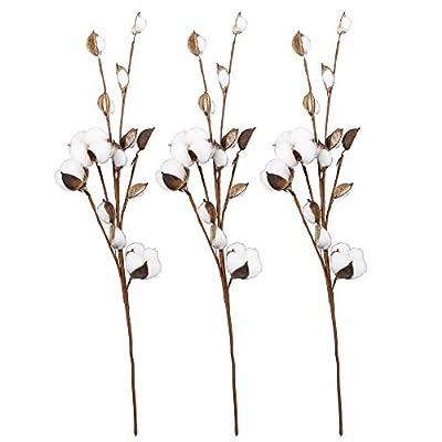 VGIA Cotton Stems Farmhouse Decoration Floral Picks - Rustic Style Vase Filler Decoration Flower