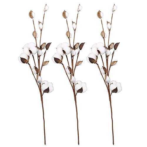 VGIA 20 Inch Cotton Stems Farmhouse Style Display Filler -Floral Decoration-Rustic Wedding ()