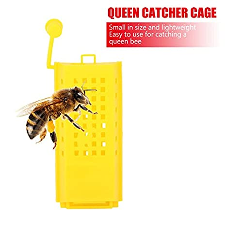 Set Professional Queen Bee Butler Cage Catcher Trap Case Beekeeping Tool 10pcs