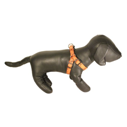NCAA Oregon State Beavers Collegiate Dog Harness (Large)