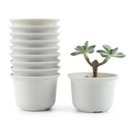 10 pack flower pots - 9