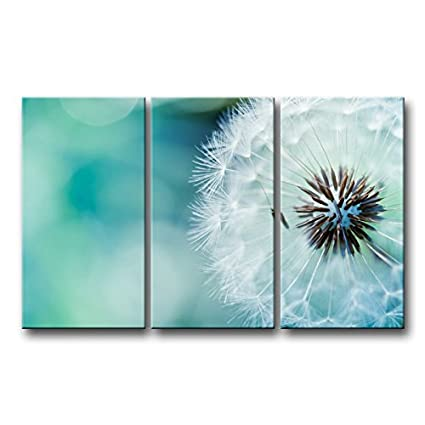 3 piece Wall Art Painting Nature Flowers Dandelions White Flowers Prints On Canvas The Picture Flower  sc 1 st  Amazon.com & Amazon.com: 3 piece Wall Art Painting Nature Flowers Dandelions ...