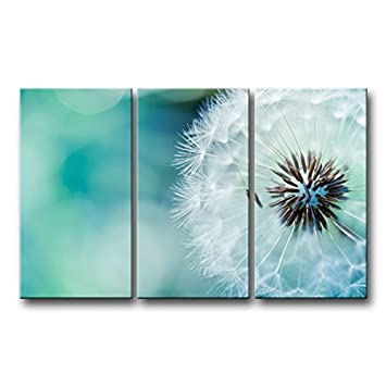 3 Piece Wall Art Painting Nature Flowers Dandelions White Flowers Prints On  Canvas The Picture Flower