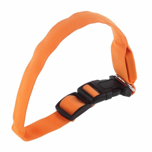Neewer® Adjustable Nylon Collar/Leash with Glow Safety LED Flash Light for Pet Dog (Orange)