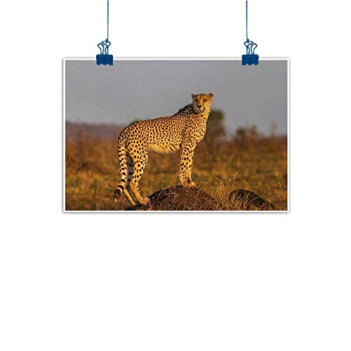Outdoor Nature Inspiration Poster Wilderness Safari,African Wild Animal Cheetah Standing on Termite Mound Savannah Nature View,Ginger Apricot Dust 24