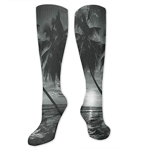 Compression Socks for Women and Men,Coconut Palm Trees On Beach Bend By The Wind Horizon Over The Sea Picture,Best Medical,for Running,Hiking,Varicose Veins,Circulation & Recovery