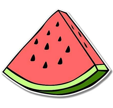 Wireless, Rechargable Design Skinz Premium Vinyl Decal for The Apple Magic Mouse 2 with Multi-Touch Surface The All Over Watermelon Slice Pattern