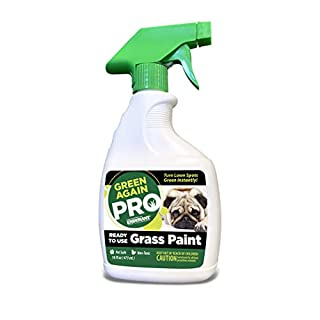 Pre-Mixed Grass and Turf Paint - All Natural Pet-Friendly Lawn Colorant Turns Spots Green Again with Eco-Friendly Point-and-Spray Application (16 oz) (Cool Season Grasses)