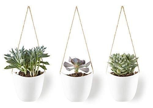 - Modern Ceramic Hanging Planters, Succulent Plant Pots, Set of 3