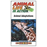 Animal Adaptations (Animal Life in Action) [VHS]