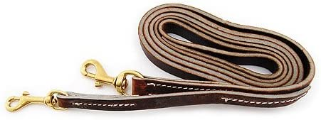 Leerburgs Puppy Leather Collar LeashTM product image
