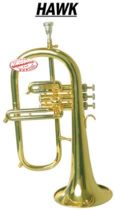 Hawk Flugelhorn with Case, WD-FG