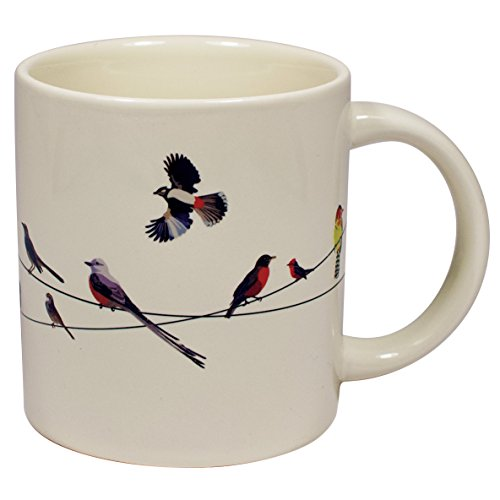 Gift Wire - Birds on a Wire Heat Changing Mug - Add Coffee or Tea and Colorful Birds Appear - Comes in a Fun Gift Box