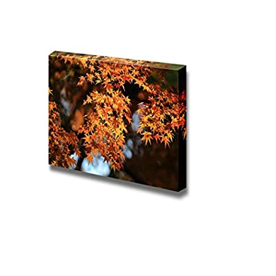 Canvas Prints Wall Art - Beautiful Scenery/Landscape Autumn Japanese Garden with Maple | Modern Wall Decor/Home Decoration Stretched Gallery Canvas Wrap Giclee Print & Ready to Hang - 32