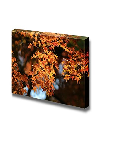 Beautiful Scenery Landscape Autumn Japanese Garden with Maple Wall Decor ation