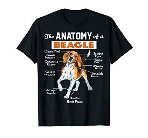 Adult Sweatshirt Beagle - The Anatomy Of A Beagle Shirt