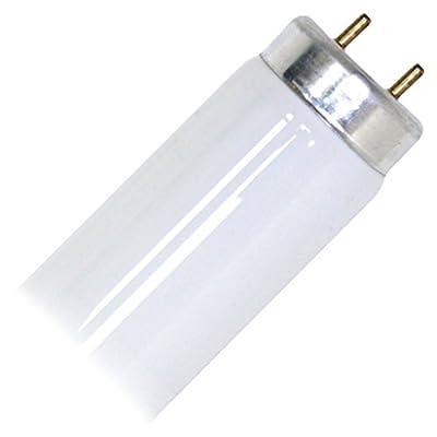 Pro-Start 02010 - F20T10/CW Straight T10 Fluorescent Tube Light Bulb