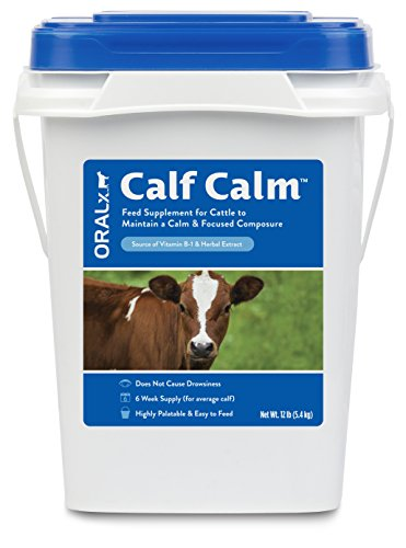 Oralx Calf Calm Pellets Daily Feed Supplement for Show Calves and Cattle to Maintain Calm, Focused Composure. Specially Formulated with Vitamin B-1 and Herbal Extract. 12 lb Pail. Made in USA