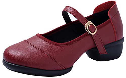 Abby 520 Womens Jazz Split Mary Jane Breathable Closed Toe Flat Square Mesh Dance Shoes Red 1wvsE