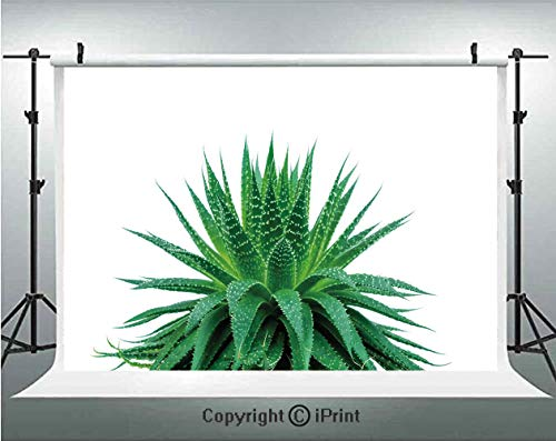(Plant Photography Backdrops Medicinal Aloe Vera with Vibrant Colors Indigenous Species Alternative Natural Remedy,Birthday Party Background Customized Microfiber Photo Studio Props,10x6.5ft,Fern Green)