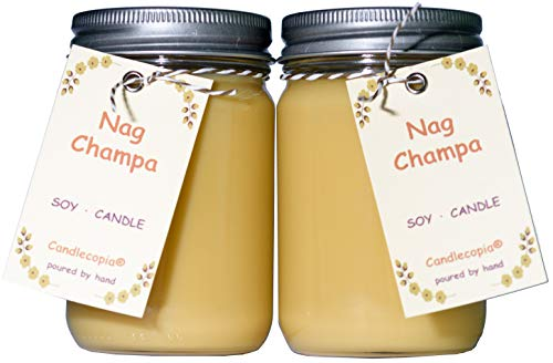 Candlecopia Strongly Scented Vegan Jar Candles x 2 Pack (Nag Champa)