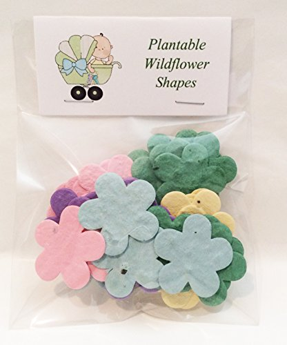 - Bag of 24 Plantable Baby Shower Flowers
