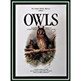 img - for Owls (The Natural History Museum Library) book / textbook / text book