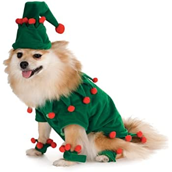 Elf Pet Costume, Medium - Amazon.com: Elf Pet Costume, Medium: Pet Supplies