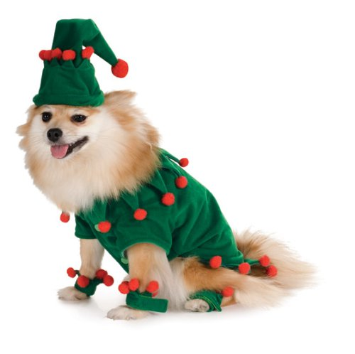[Elf Pet Costume, Small] (Green And Red Elf Costumes)