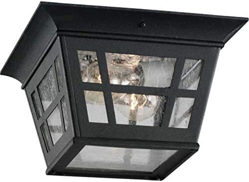 Sea Gull Lighting 78131-12 Herrington Two-Light Outdoor Ceiling Flush Mount Hanging Modern Fixture, Black Finish