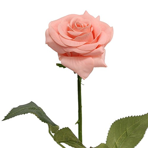 - Angel Isabella 10 Stems of Real touch medium open Real Touch nice rose (Bellini(Peach))