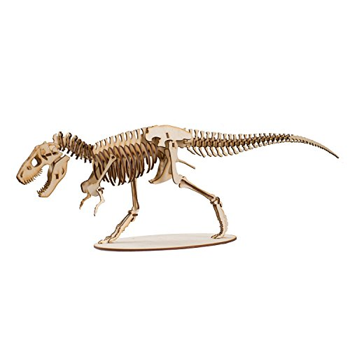 Crafts - T-Rex Skeleton - Model Kit Raw Wood -