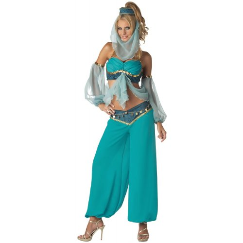 InCharacter Harem's Jewel Adult Costume - Large by InCharacter
