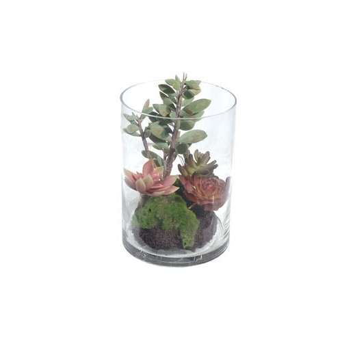 Gold Eagle USA Artificial Mix Succulent Plant with Soil i...
