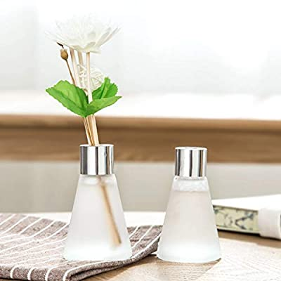 Euone_Home Wall Secals Reed Oil Diffusers with Natural Sticks, Glass Bottle and Scented Oil 50 ML,Easter Decorative for Bedroom: Home & Kitchen