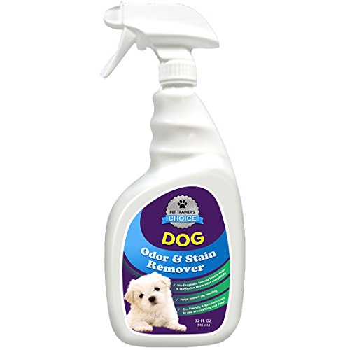 Dog Smell Of Rug: Dog Urine Enzyme Cleaner By Pet Trainer's Choice