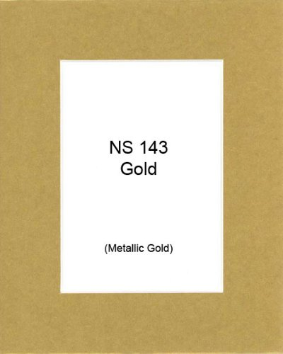 4 Ply Gold Paper (Pack of 10 16x20 Metallic Gold Picture Mats Mattes with White Core Bevel Cut for 11x14 Photo + Backing + Bags)