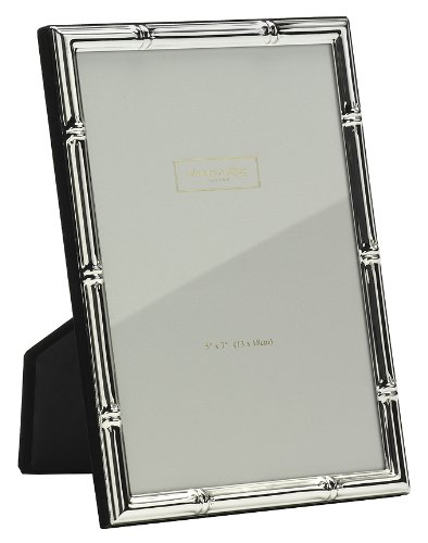 Amazon.com: Addison Ross, Photo Frame, 8x10, Silver Plate Bamboo, 8 ...