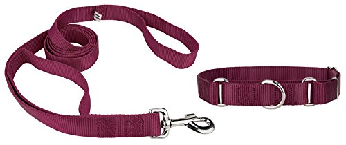 Dog Petsmart Tags (Country Brook Design Martingale Heavyduty Nylon Dog Collar and Double Handle Leash - Burgundy - Medium)