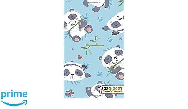 2020-2021 2 Year Pocket Planner: Nifty Two-Year (24 Months ...