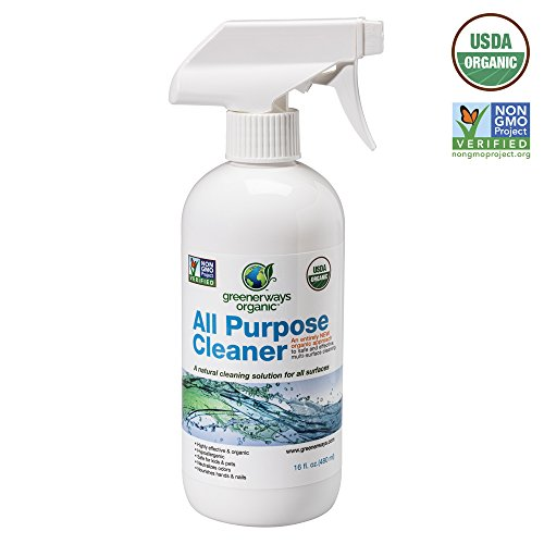 top 13 best household toilet cleaners household toilet