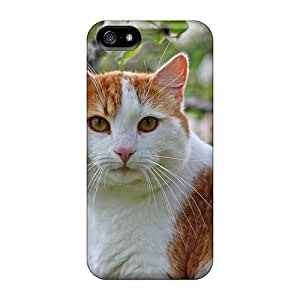 Series Skin Cases Covers For Iphone 5/5s(amazing Cat)