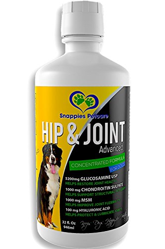 Pro Joint Formula (Concentrated Liquid Glucosamine for Dogs - Most Advanced Pro Hip and Joint Supplement with Chondroitin MSM Hyaluronic Acid, Maximum Strength 5200mg Glucosamine Support Joints & Maintain Mobility, 32oz)