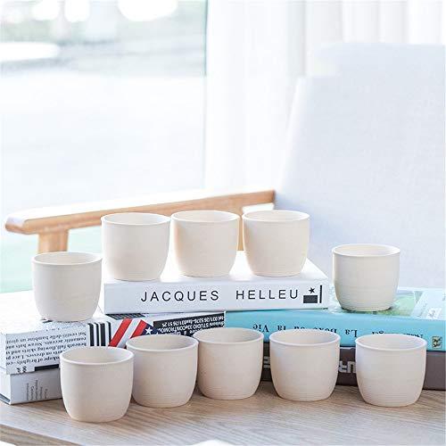 - 6-Piece Set,White Porcelain Mini Small Ceramic Flower Pot Green Plant Container, Jewelry Design Flower Planter/Decorative Plant Container